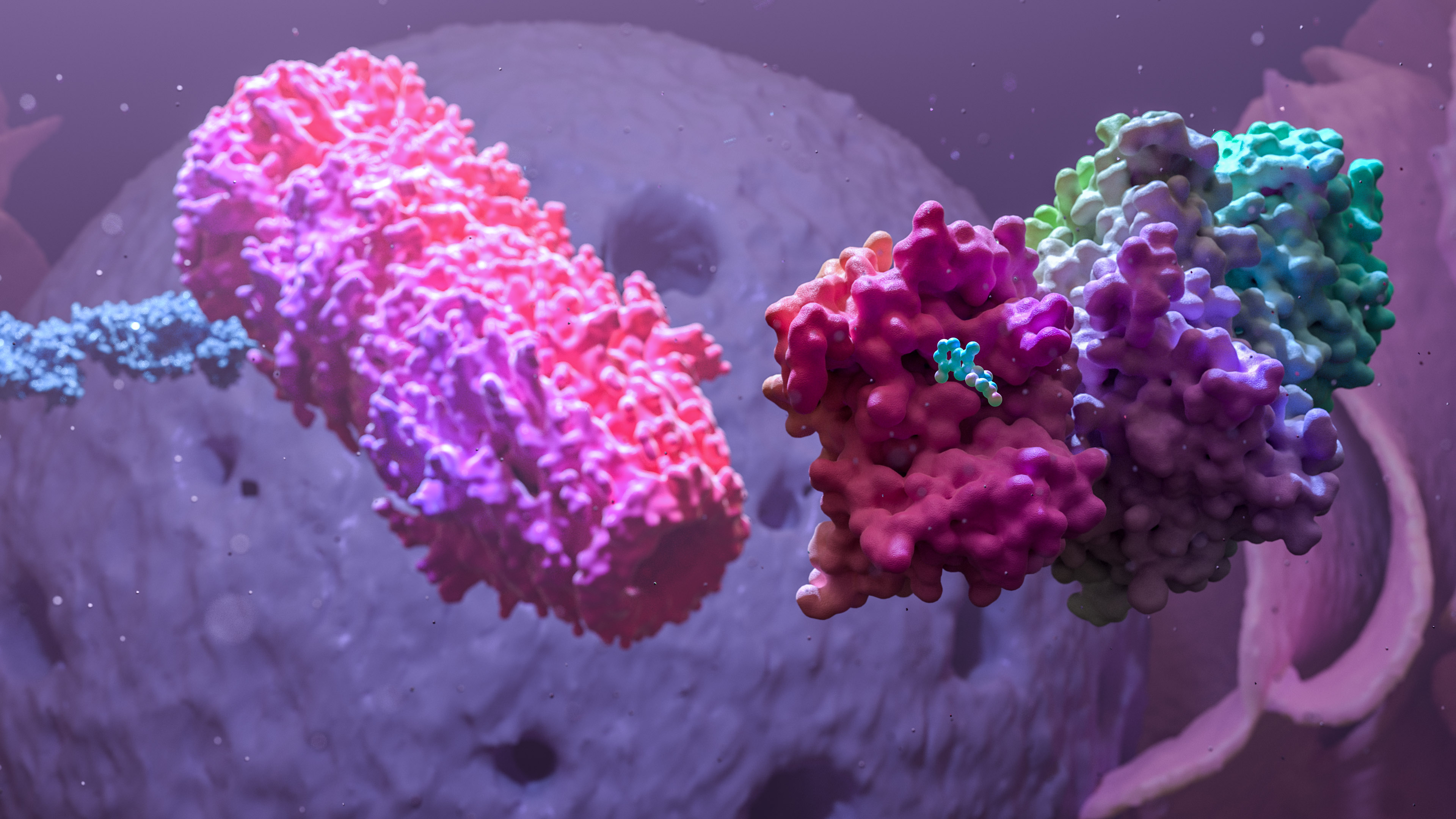 Nucleus and proteosome in the background created for a 3d medical animation